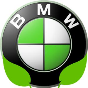 bmw verte logo